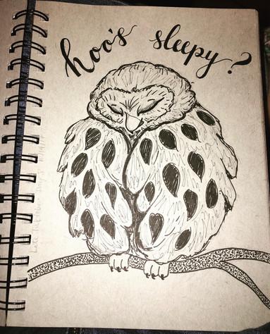 Hoo's Sleepy?