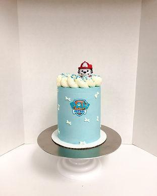 Paw Patrol Cake Victoria BC.jpeg