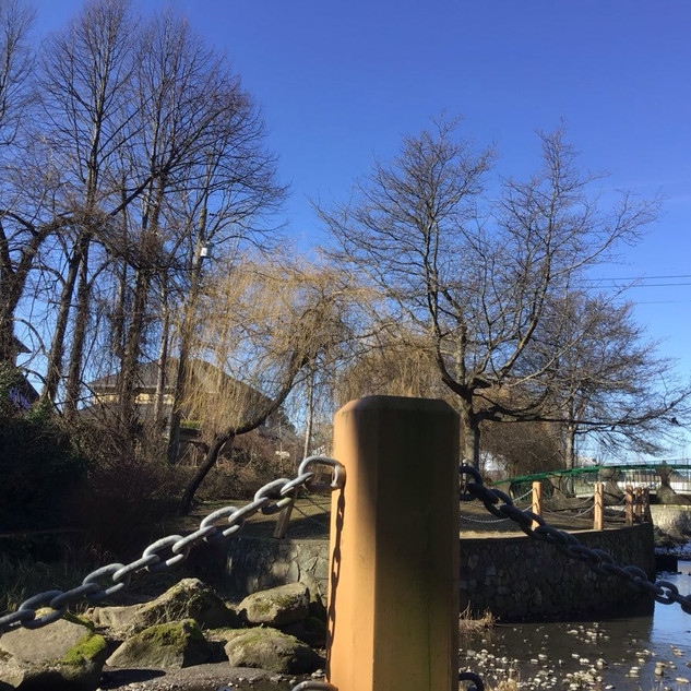 """E, aged 6 shares """"This picture includes water, the bridge, and many trees."""""""