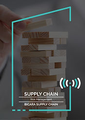 Webinars_11. Supply Chain Risk Managemen