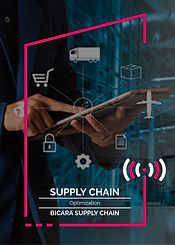 Webinars_15. Supply Chain Optimization.j