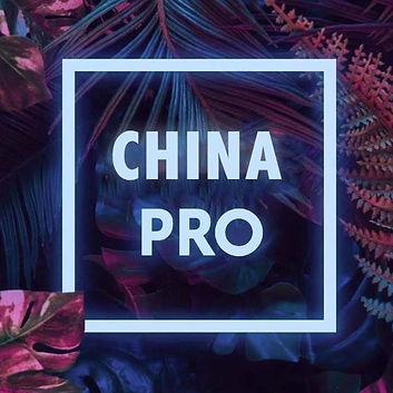 China pro.JPG