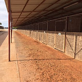 shed row stalls