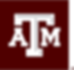 Texas A & M.png