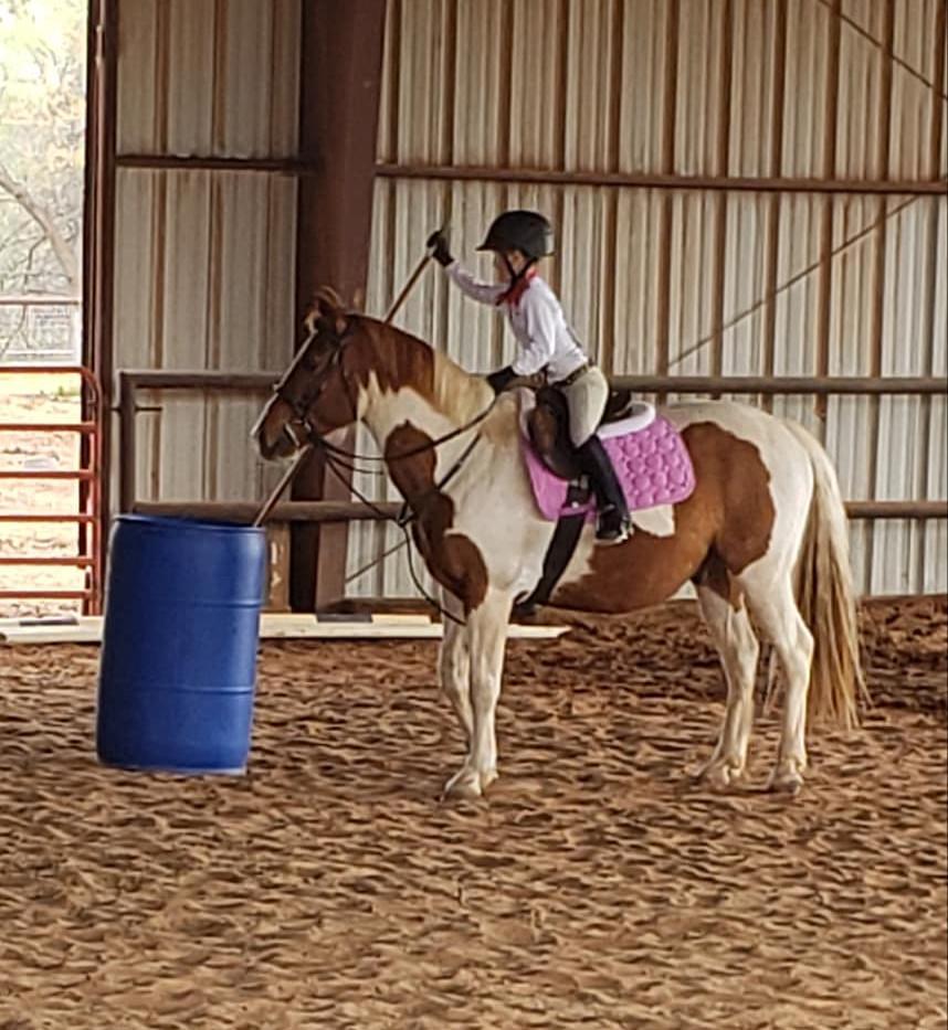 macaroni pony.jpg