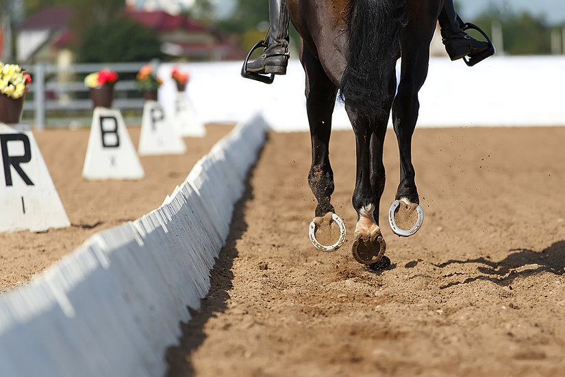 Close up of the horse shoe in motion. Dressage competition..jpg