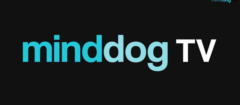 Mind Dog TV & Connecting with Jennifer Filzen