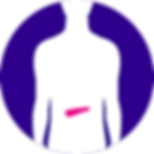 Pancreatic - LOW.png
