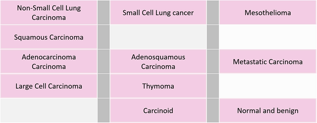 THORACIC Sample Types.png