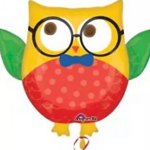 Owl Grad Balloon