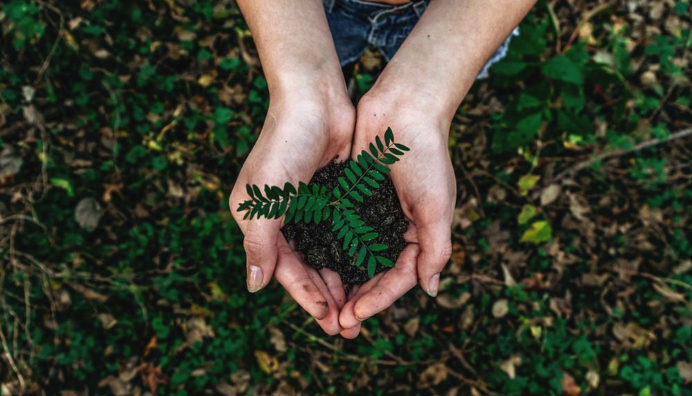 Preservation de la biodiversite