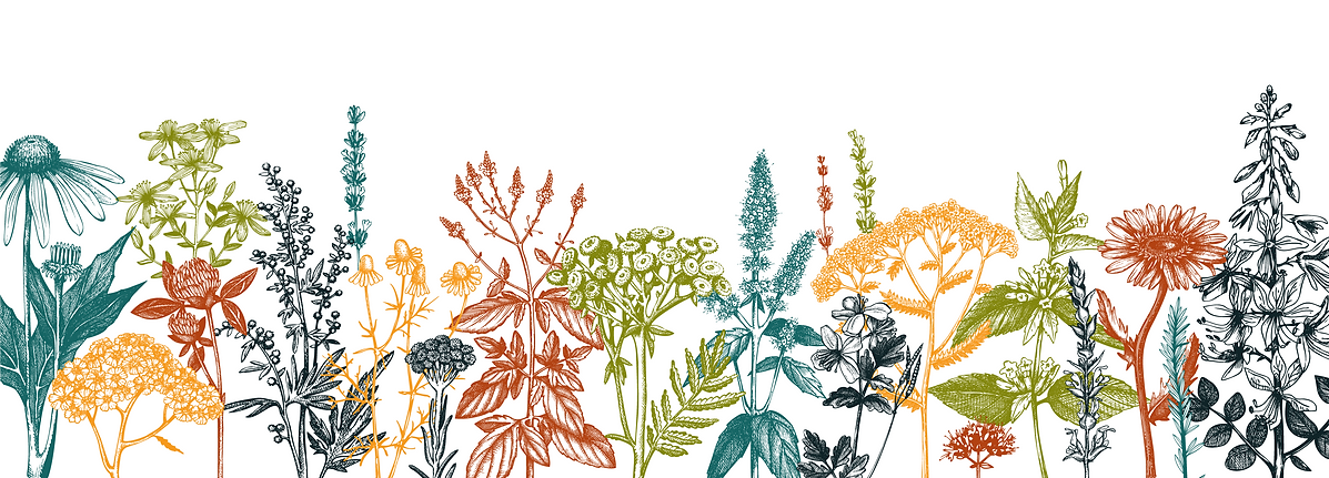 BB-Graphic-Herbs_Color_Small.png