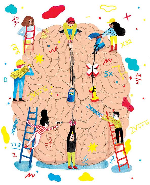Luzac-Brain-Voorbeeld-1_845.jpg