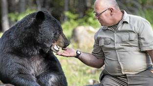 L'homme qui murmurait à l'oreille des ours