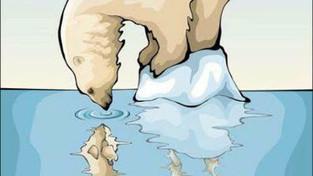 Les ours menacés, protégeons-les !