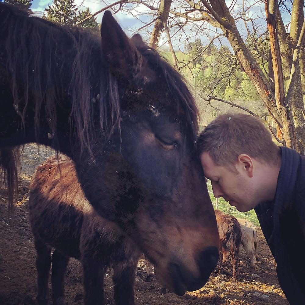 Simon and animal sanctuary horse