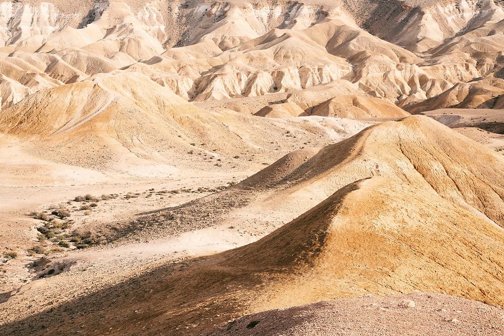 The rounded hills of upper Judean Desert.