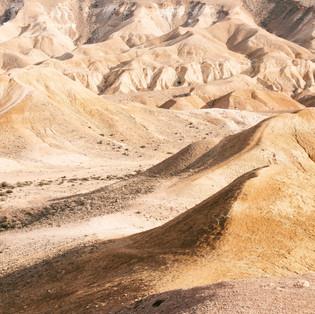 THE WONDERS OF THE DESERT