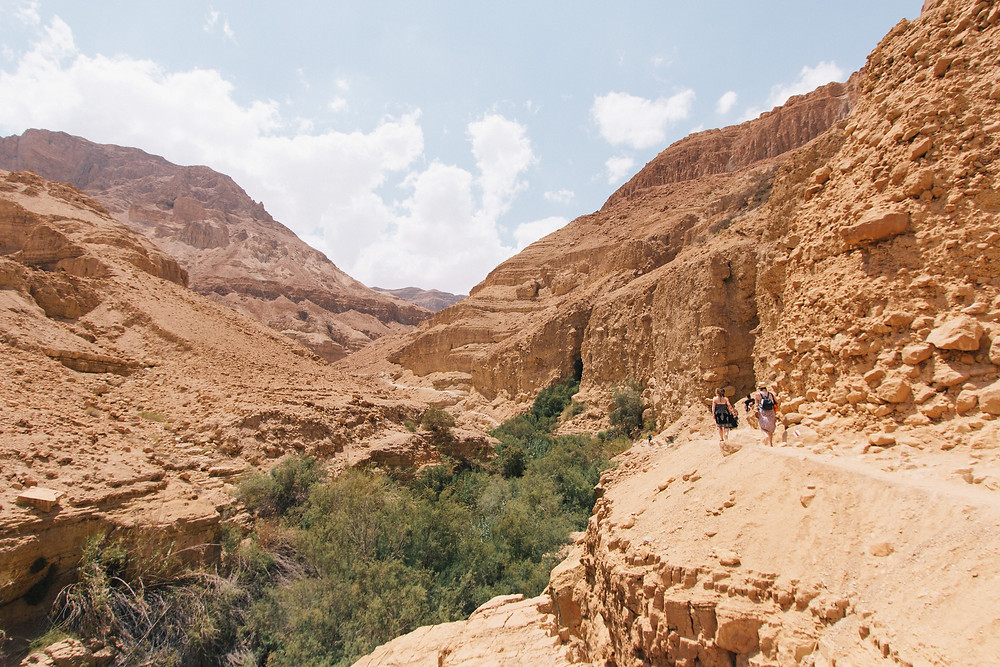 Hiking in Arugot Canyon outside of Ein Gedi Oasis.