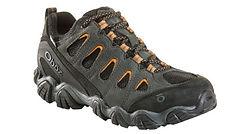 Sawtooth II BDry shoe
