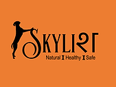 Skylish_Logo.png