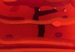 070617 (12 of 21) red-purple slice