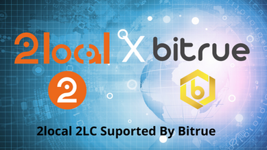 2local: Yield Farming, Staking, and DeFi Exchange Built on The Binance Smart Chain (BSC)