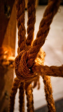 thomas-kinto-3CUcbyRVkmI-unsplash knot.j
