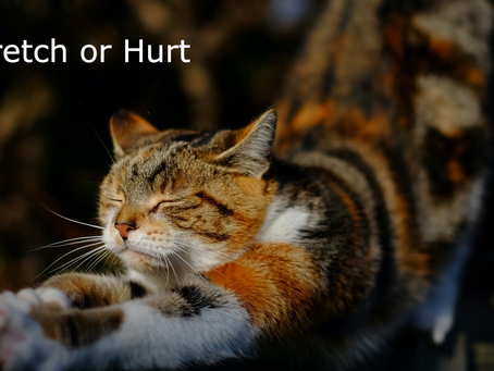 Stretch or Hurt: Your Choice