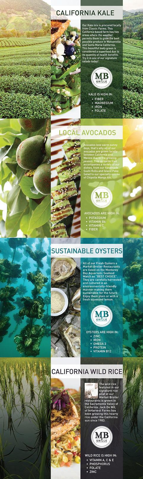 Sustainability_web2.jpg