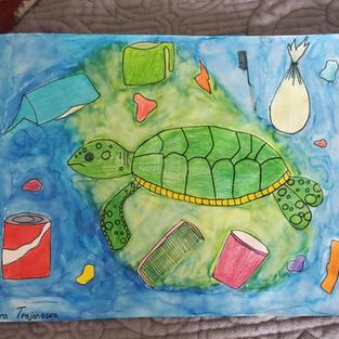 Endangered Sea Turtles
