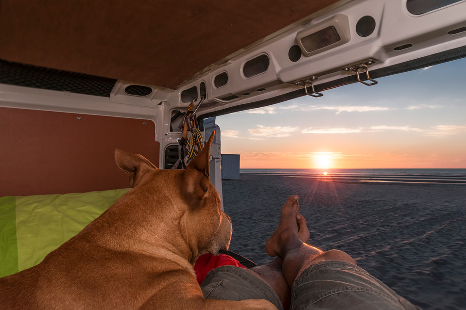 From the campervan with love