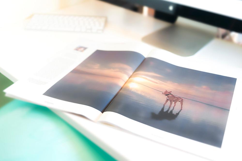 Publication 'Krant van West-Vlaanderen' - Redactor Bert Vanden Berghe