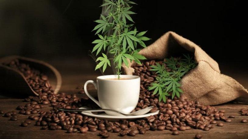 Coffee and leaf.jpg