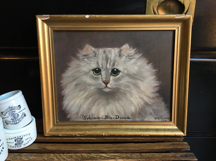 Small antique oil painting of white persian cat - E. Marion Nelson, 1924