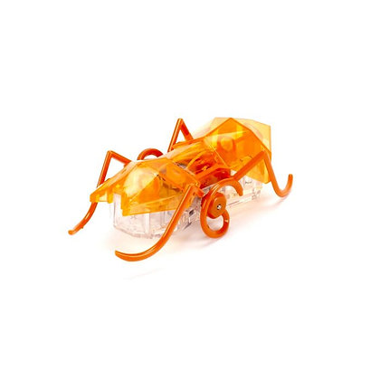 Micro Ant | מיקרו נמלה