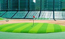 ゴルフグリーン.jpg