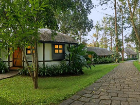 Orange county Resorts in Coorg