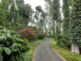 Tourist places of Coorg