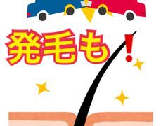江東区で交通事故も発毛も!