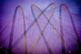 Dallas Love