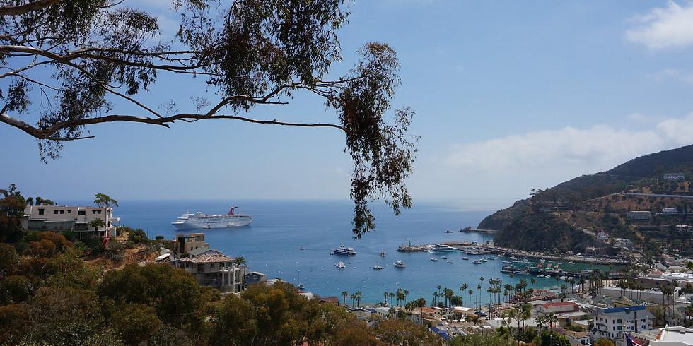 Catalina Island History and Highlights