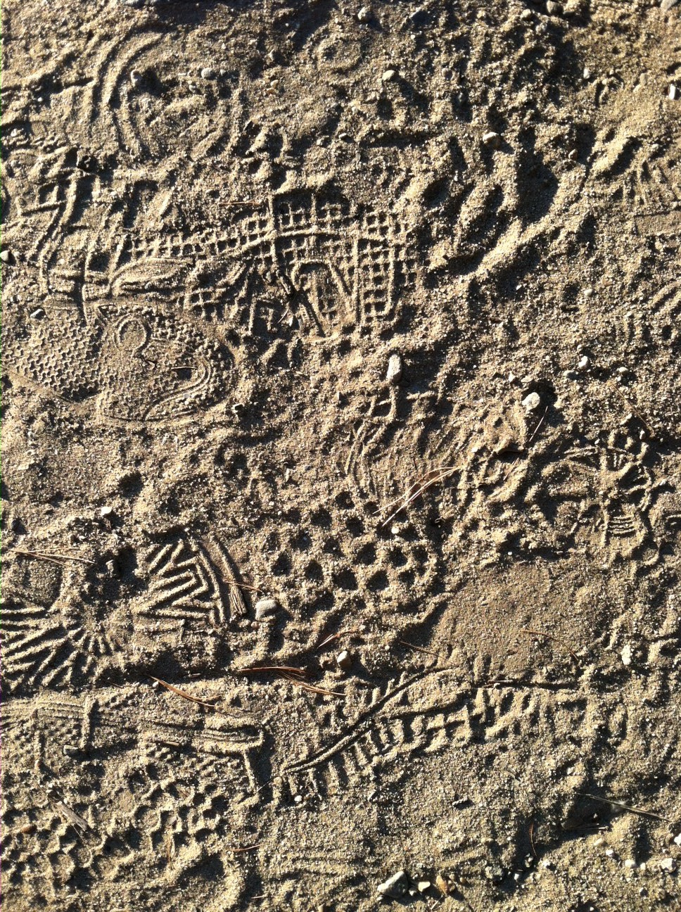 Walk prints at Walden Pond
