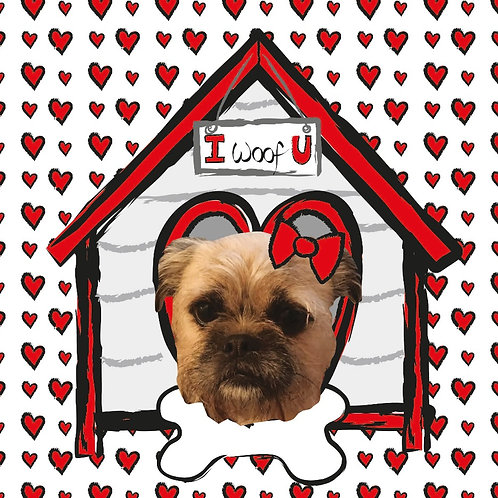 PERFECT PICS - PET CARD HOUSE RED