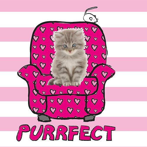 PERFECT PICS - PET CARD CHAIR PINK