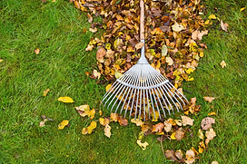 Rake and leaves.png