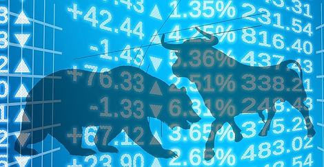 Bull and bear investment strategies
