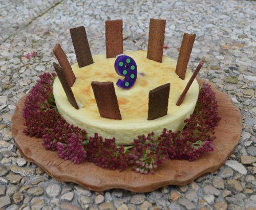 angie 9 years cake 500.jpg