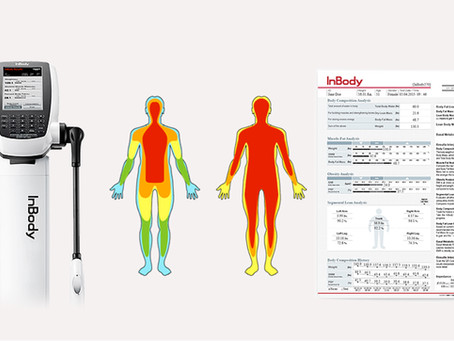 Body Composition Analysis 101:               An Introduction