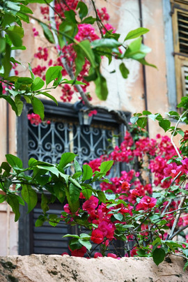 Nafplio-window-The-Greekish-Life.jpg